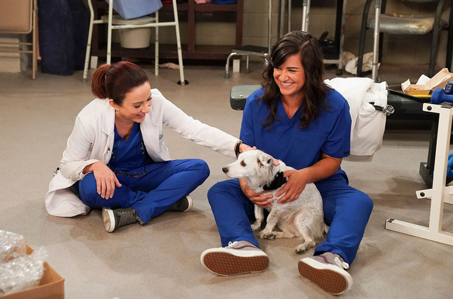 """Carol's Second Act - Season 1, episode 9: """"Therapy Dogs"""""""